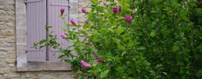 Maison indépendante avec murs en pierre de Gordes, la maison Caroline